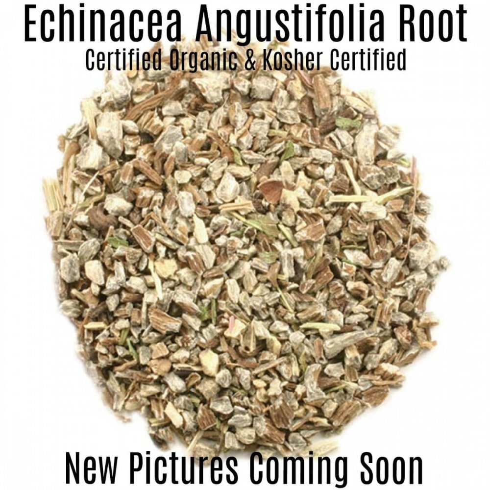 Echinacea Angustifolia Root cut & sifted - Pronounce Skincare & Herbal Boutique